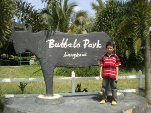 baffalo Park Langkawi